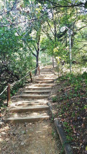밥먹고 산책이랍시고 왔는데 계단이 많아서 당황스럽다.