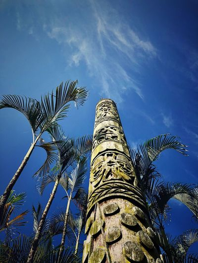 Kelireng Multi Cultural Sarawak Kelireng Totem Pole Low Angle View Sky Plant Nature Tree No People Day Outdoors Tall - High Blue Cloud - Sky