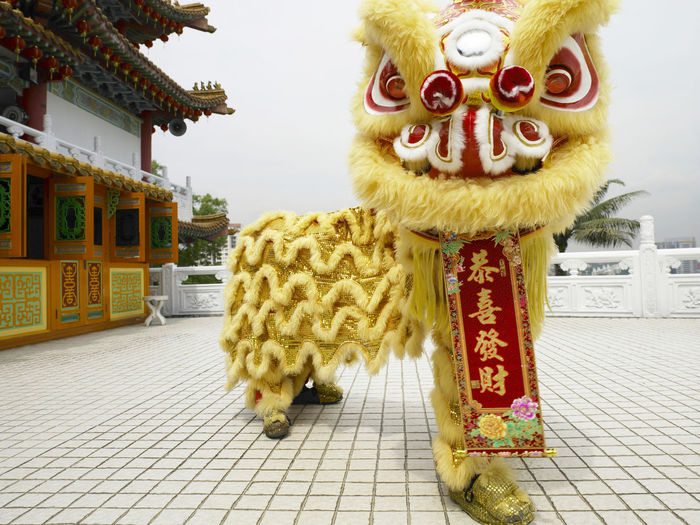 yellow lion dance at temple Celebration Gong Xi Fa Cai Good Luck Lion Dancers Lion Dance Performance Traditional Culture Animal Representation Architecture Built Structure Chinese Lion Chinese New Year Costume Cultures Day Festive Lion Dance Opening Event Performance Religious  Special Occasion