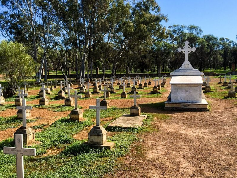Old Cemetary in New Norcia Group Cemetery Australia Western Australia Historic Ground Burial Cemetery Photography Headstones New Norcia Plots Burial Ground Burial Site Death Rows Grave Graveyard Gravestone Remembrance Resting Place Cross Religious  Spiritual Loved Ones Trees