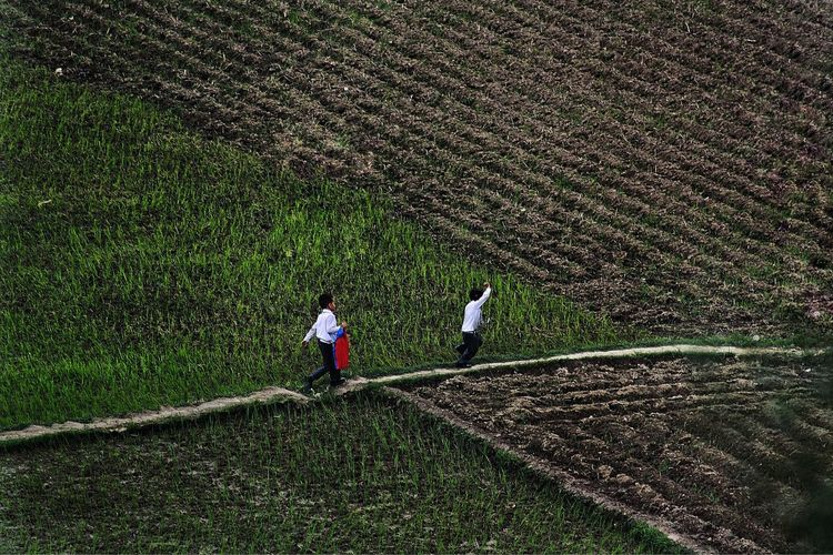 Nepal Nepal Travel Kathmandu Kathmandu, Nepal Children Photography Childrenofnepal Lovenepal Real People Agriculture Grass Working Field Men One Person Green Color High Angle View Day Outdoors Standing Growth Nature Occupation Farmer Rice Paddy Tea Crop
