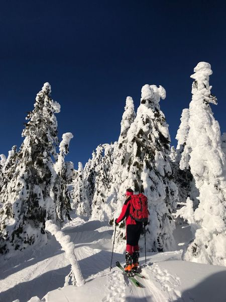 Skitourengeher Snow Real People Winter Cold Temperature Nature Sunlight Leisure Activity Mountain Outdoors