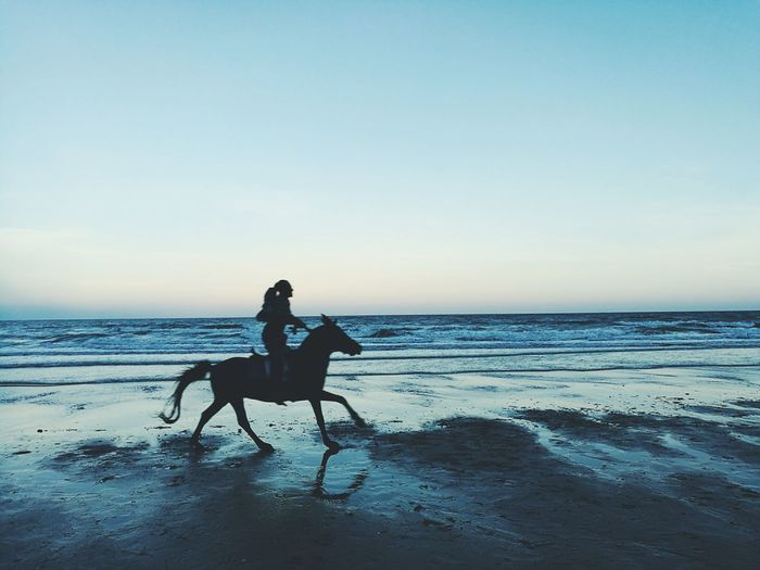 Woman Riding Horse On Beach Against Sky During Sunset