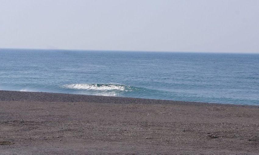 Surfing Surfboard Kochi Niyodo