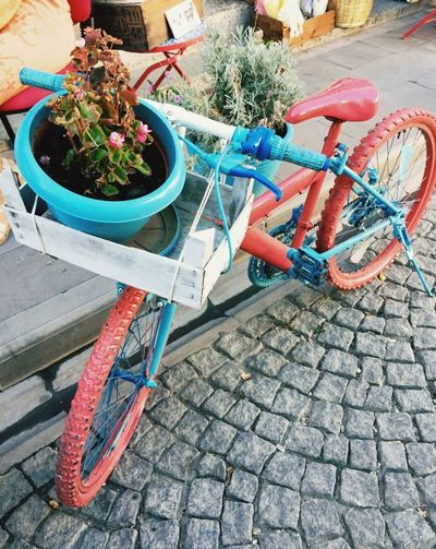 Bicycle Flowers Summer Walking Around Enjoying Life Bozcaada