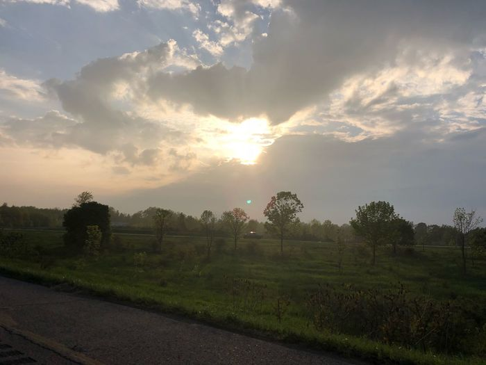 Freedom Sky Cloud - Sky Plant Tree Scenics - Nature Beauty In Nature Nature Sunset No People Tranquil Scene Tranquility Field Sunlight Landscape Land Environment Growth Road Transportation Outdoors