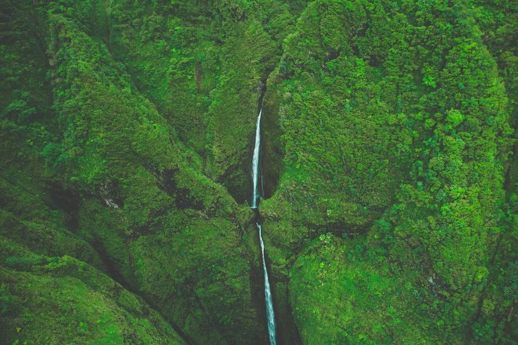 A Bird's Eye View Sacred Falls Oahu Hawaii Hawaiian Waterfall Tall Nature Nature_collection Nature Photography Landscape Landscape_Collection Aerial View