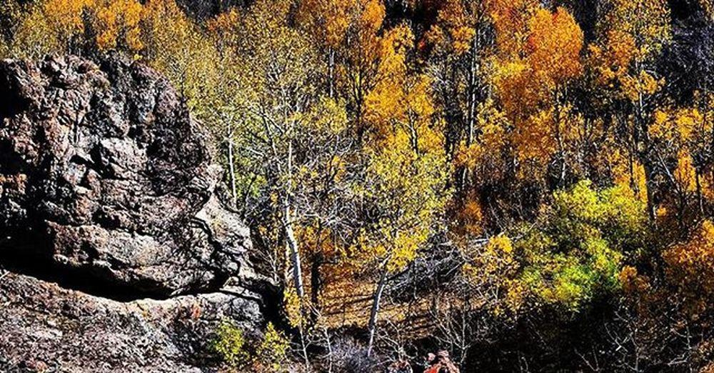 Nevada Nevadadesert Desertlove Explorenevada Realnevada Prettygoodtoday Todaywasagoodday Fallisintheair Life Humboltcountynevada Nationalpark