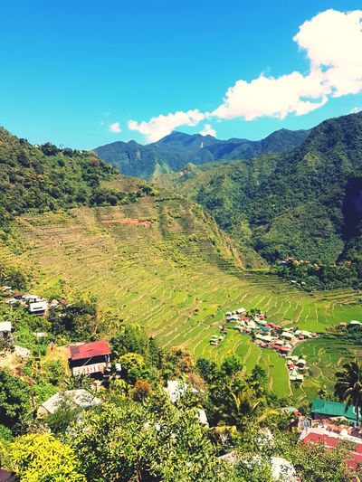 Another beautiful Rice amazing View is Not the only the Batad Rice terace, you will find an amazing waterfalls 😍 Nature Photography Nature Philippines Rice Field Manmade Green Banaue Rice Terraces Mountain Tree Rural Scene Sky Landscape Mountain Range Grass Cloud - Sky Terraced Field Rice Paddy Valley The Great Outdoors - 2018 EyeEm Awards