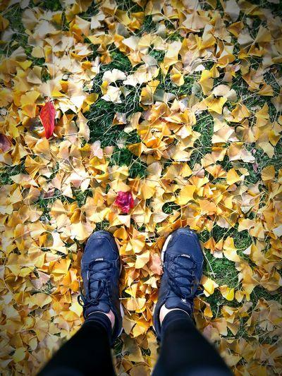 Low Section Shoe Human Leg Standing Lifestyles Human Body Part Real People Men Japan Park Sapporo,Hokkaido,Japan