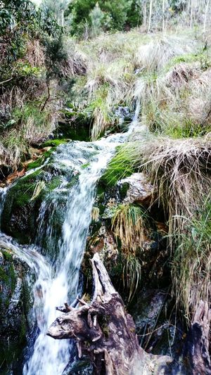 Nature Relaxing Nature Photography Waterfall Water
