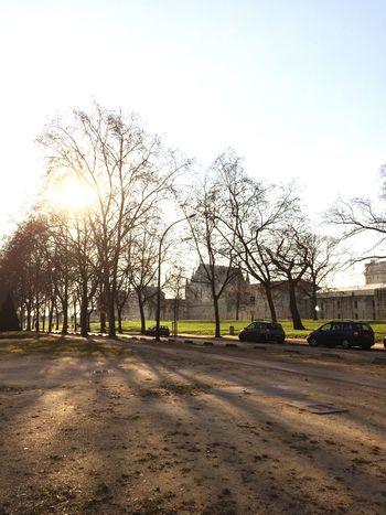 Thinking. Castle Vincennes