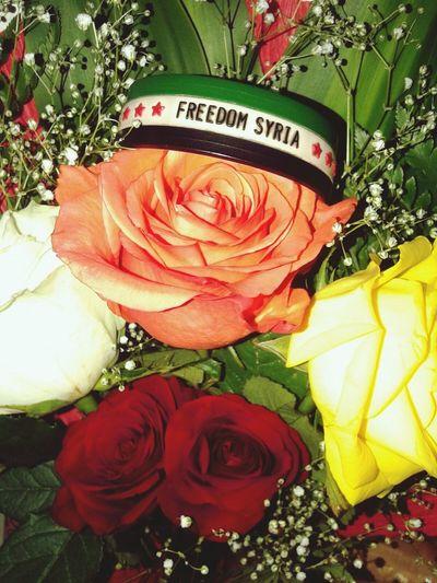 الرياض Flowers سوريا حرة الثورة_السورية اهداء للثورة العظيمة ... يلعن روحك ياحافظ انت وعيلتك وطائفتك