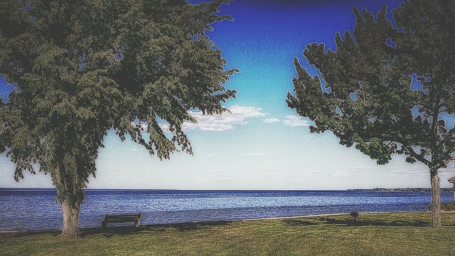 Park Bench Summertime Relaxing In The Sun Lakeside Ontariolake The Great Lakes The Great Outdoors Beautiful Day Nature_collection Blue Sea