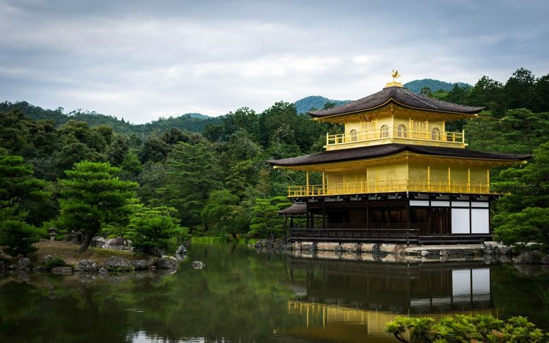 Kinkaku-ji Temple Tree Yellow The Traveler - 2018 EyeEm Awards EyeEmNewHere Tradition Cultures Travel Photography Travel Destinations Japan Art Plant Architecture Built Structure Tree Water Lake Building Exterior Nature Sky Waterfront No People Day Religion Outdoors Reflection Cloud - Sky Building The Traveler - 2018 EyeEm Awards EyeEmNewHere