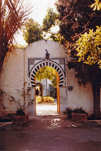 Attractive tiled ornamental gateway leading to an inner courtyard - Hammamet, Tunisia Architecture Nature Door Tree Entrance Day Outdoors Plant Doorway Entry Arch Growth Medina No People Open Door The Way Forward Building Exterior Built Structure Hammamet Tunisia A Taste Of Tunisia Tunisian Hotels Ornamental Gateway