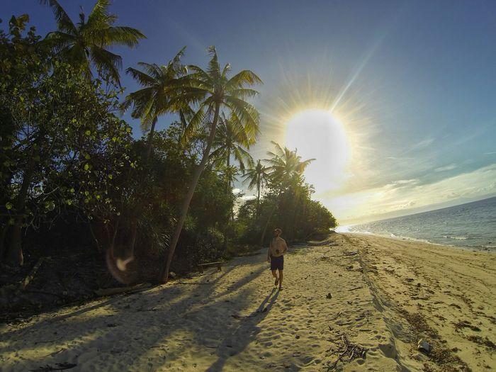 Beach Cabilao Island Palm Palm Trees Philippines Sun