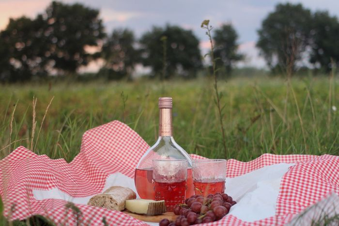 Tranquil Scene Food And Drink Picnic Blanket Picnic Outdoors Field Nature Landscape Eye4photography  EyeEm Gallery Wine Not Summer Sommergefühle Food Stories