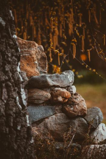 Close-up of buddha statue on rock