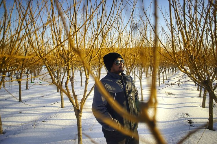 Young Man Standing Amidst Bare Trees On Snow Covered Field During Winter