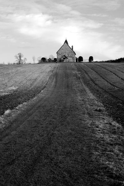The Congregation of Cows Church Architecture Black And White Blackandwhite Building Building Exterior Built Structure Cloud - Sky Environment Field Grass History Landscape Rural Scene Scenics - Nature Sky Tranquil Scene Tranquility