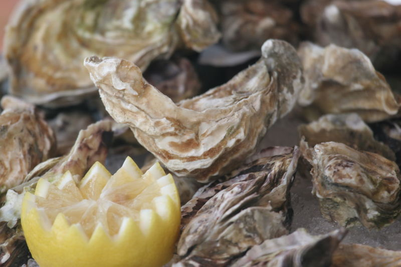 Close-up Day Delicatesse Food Food And Drink Fresh Oysters Freshness Healthy Eating No People Oysters Sea Food Shell