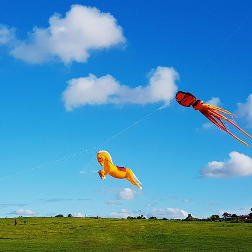 Mission Bay, Auckland Auckland City Mission Bay Nature Photography Newzealandphotography Kites Flying Kites & Winds Kites High In The Air Horse Octapus Hello World ✌ Big Kites Colourful Beautiful Sky❤ FamilyFun  Blue Sky Clear Sky
