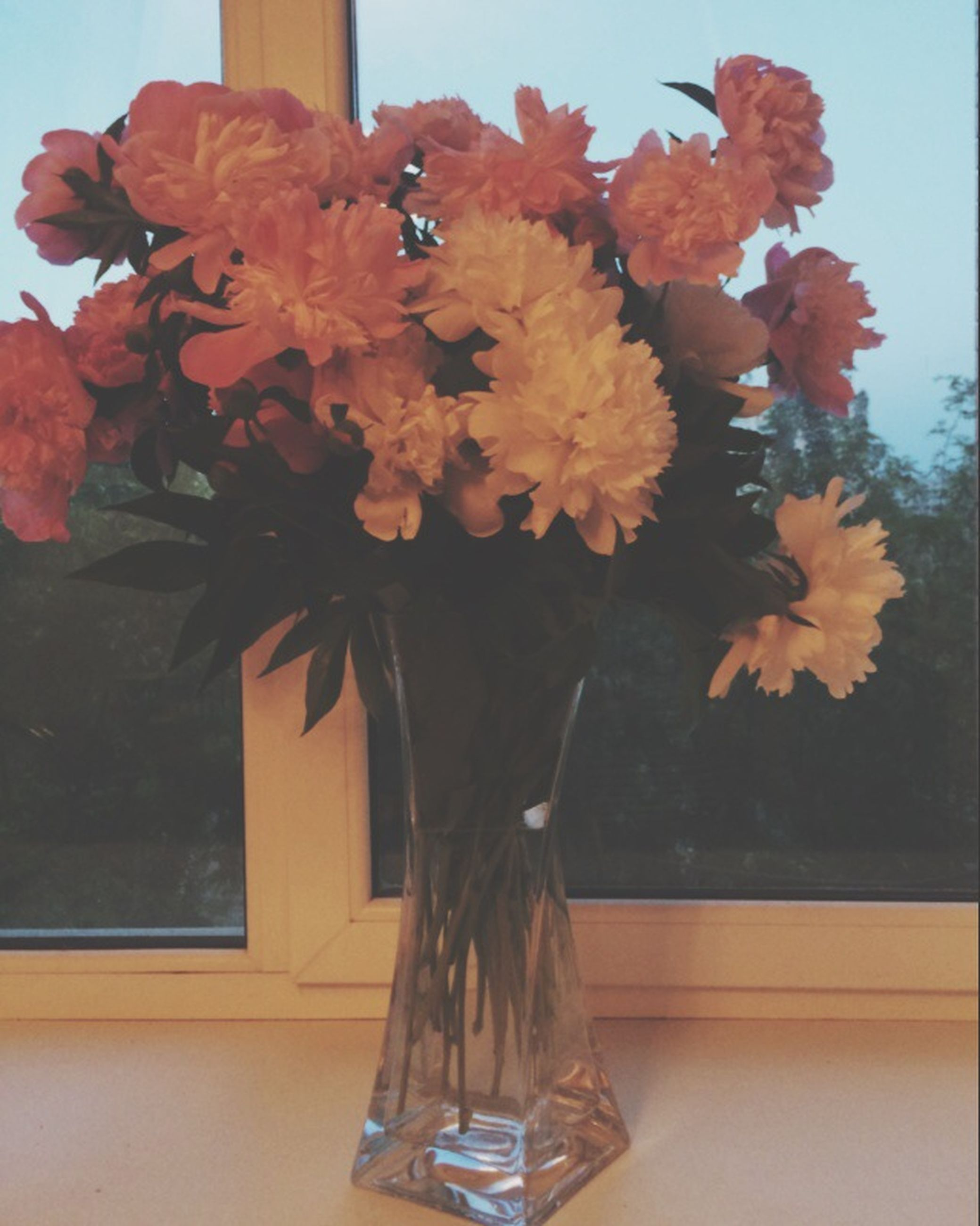 flower, vase, indoors, fragility, freshness, potted plant, petal, plant, table, growth, window, decoration, home interior, wall - building feature, flower head, glass - material, orange color, window sill, built structure, architecture
