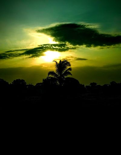 sunset Tree Silhouette Atmospheric Mood Dramatic Sky Sunset Landscape Scenics Cloud - Sky No People Sky Nature Beauty In Nature Shadow Tree Area