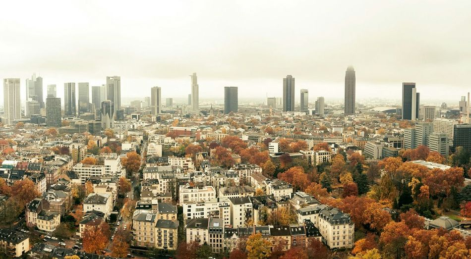 Autumn in the city Autumn Autumn🍁🍁🍁 Leaves Frankfurt City Skyline Cityscapes Aerial Shot Drone