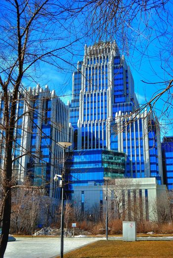 Architecture Bare Tree Blue Building Building Exterior Built Structure City City Life Cityscape Day Development Empty Growth Modern No People Office Building Outdoors Sky Skyscraper Tall - High The Architect - 2016 EyeEm Awards Tree Ziggurat