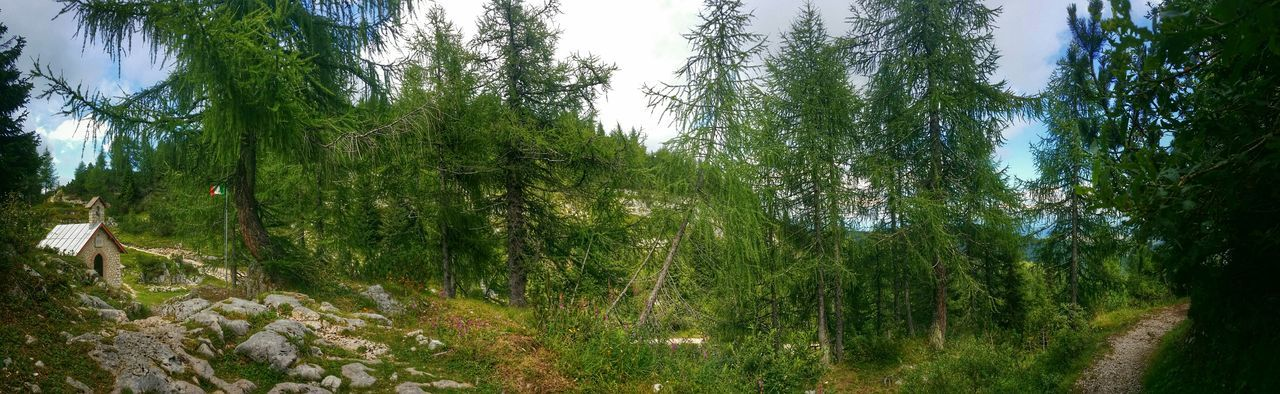 Monte Ortigara, Asiago Highland, Vicenza, Italy Traveling Italy Asiago Highland Monte Ortigara Mobile Photography Art Fineart Wwi Historical Landmarks Panoramic View