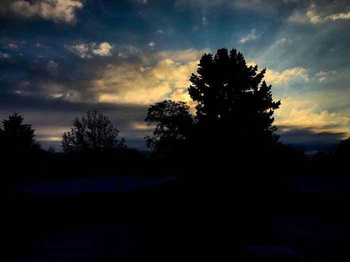 Sunrise or sunset Sunrays Landscape Peace Sunset Sunrise Tree Sky Silhouette Cloud - Sky Tranquil Scene Tranquility Nature