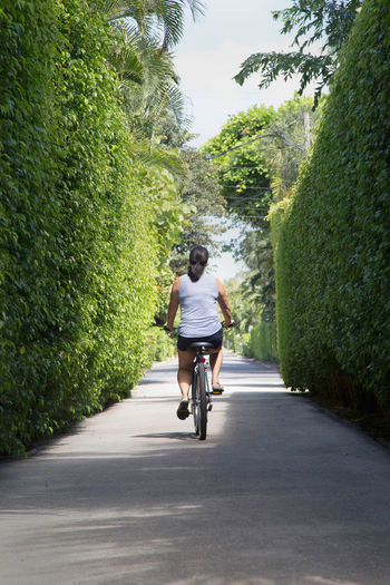 Woman riding her bike along path away from camera Bicycle Carefree Casual Clothing Day Diminishing Perspective Footpath Freedom Full Length Green Color Leisure Activity Lifestyles Nature Outdoors Rear View Road The Way Forward Tree Vanishing Point Woman