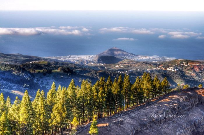 Where I Would Love To Be ... Right Now Canary Islands Landscape_Collection
