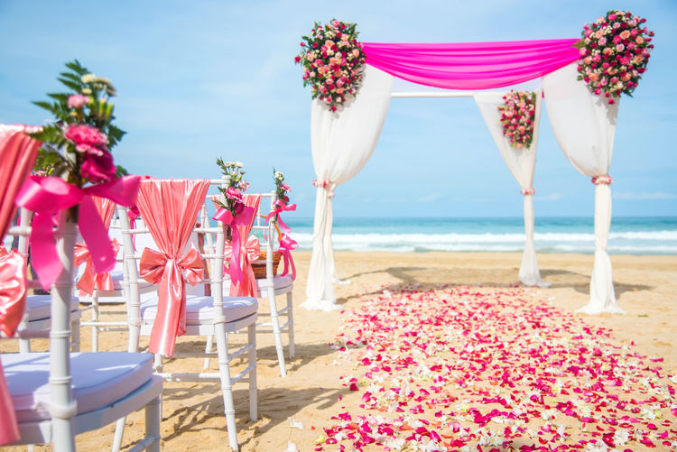 Wedding Beach Setting White Table Beautiful Flower Romantic Marriage  Romance Decoration Ceremony Tropical Outdoor Chair Sea Party Celebration Summer Decor Banquet Dinner Event Luxury Reception Elegant Love Ocean Bouquet Coast Honeymoon Nature Set Floral Beauty Arrangement Water Elégance Background Up Blue Arch Formal Pretty Garden Dining Sky Sand Private Pink 事件 人物 地点 Other Keywords