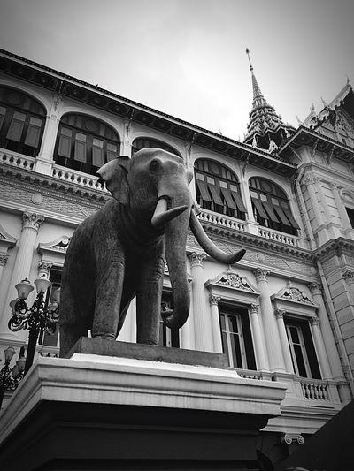 Sculpture Travel Statue City Tourism Travel Destinations Tourist Architecture Building Exterior Low Angle View Outdoors Sky Politician Day Elephant Blackandwhite Thailand Grand Palace Bangkok Thailand Bangkok Thai Culture EyeEmNewHere