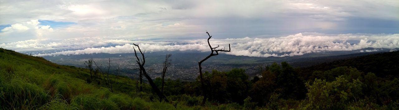 Cameroon Cloud Landscape Landschaft Mount Cameroon Mountain Nature Nature