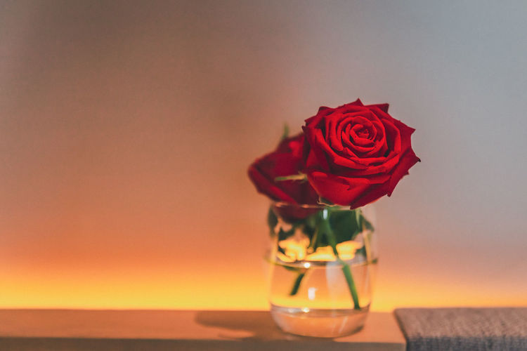 Close-up of rose bouquet on glass table