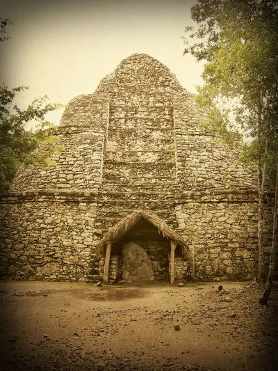 Mayan Ruins Mexico Ancient Ancient Civilization Animal Themes Archaeology Architecture Building Exterior Built Structure Coba Day History Mammal Mayanculture Nature No People Old Ruin Outdoors Sky Temple Tree