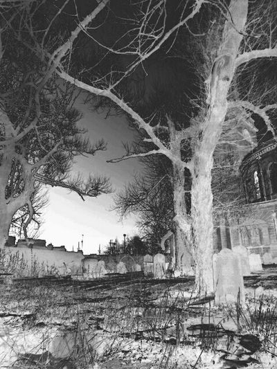 i love making thing look spooky ! Taking Photos Chilling Out Edit Hanging About In The Grave Yard Eye4black&white