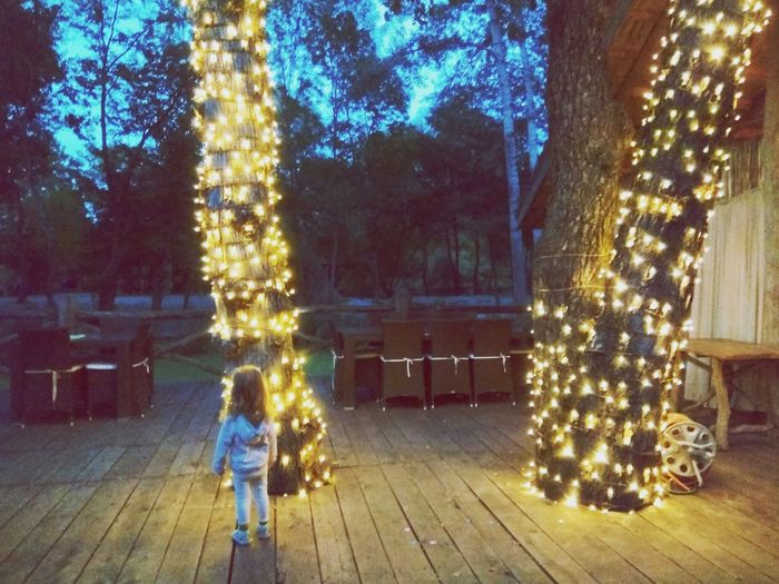 Baby girl looking at trees with a lot of lights Baby Girl Tree Christmas Decoration Christmas Lights Christmas Ornament Christmas Celebration christmas tree Tradition Christmas Market Fairy Lights Festival Carnival Light Sparks Hanging Light