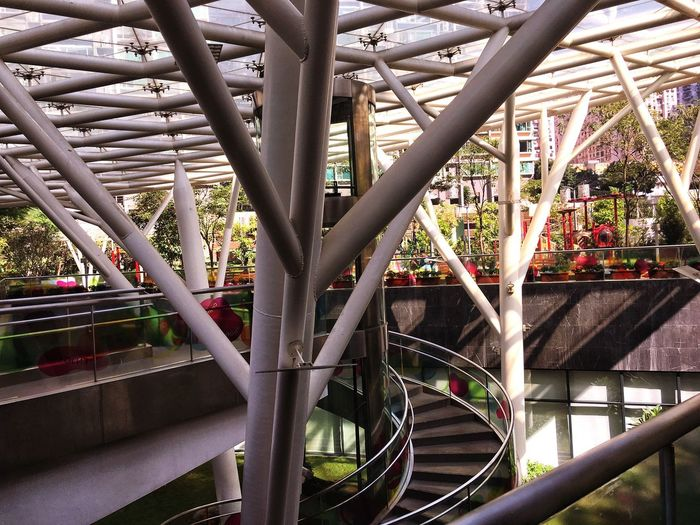 Adapted To The City Blend me In Built Structure Modern Day Tree Architecture Outdoors No People Park - Man Made Space Taipa  Macau Stilts Incognito Branch Staircase Glass Roof