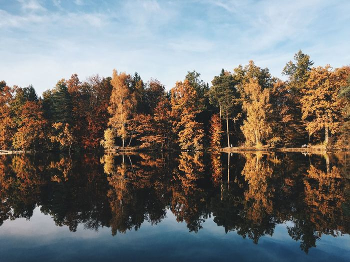 Autumn Autumn Colors Reflection Tree Nature Water Beauty In Nature Sky Idyllic Lake No People Waterfront Outdoors