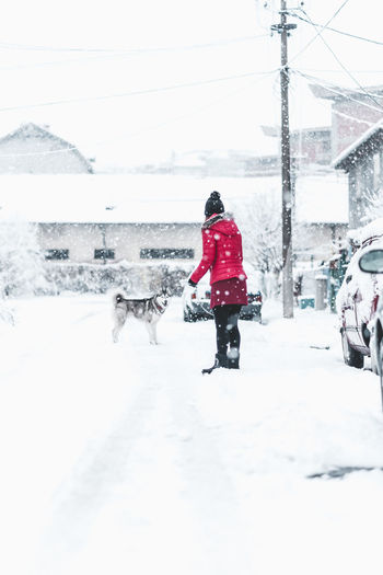 Winter Snow Cold Temperature Real People One Person Rear View Covering Full Length Nature Warm Clothing Lifestyles Day Mammal Clothing Pets Domestic One Animal Outdoors Extreme Weather Snowing Snowcapped Mountain Husky