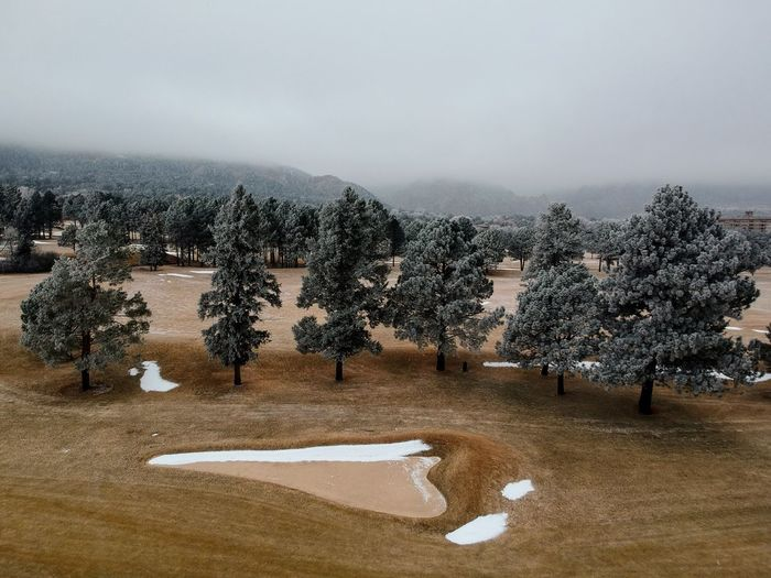 Frosted Trees on the Golf Green Tree Nature Landscape Beauty In Nature Tranquility No People Winter Outdoors Day Scenics Sky
