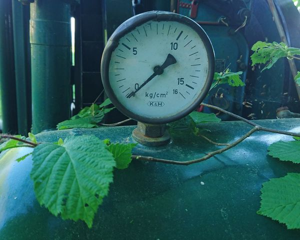 Under pressure....? Nature Takes Over Steel Barometer Green Outdoors Leaves
