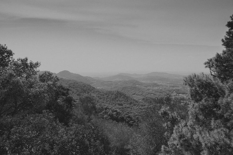 Mallorca SPAIN Travel VSCO Beauty In Nature Blackandwhite Day Landscape Lookslikefilm Monochrome Mountain Nature Outdoors Scenery Traveleurope