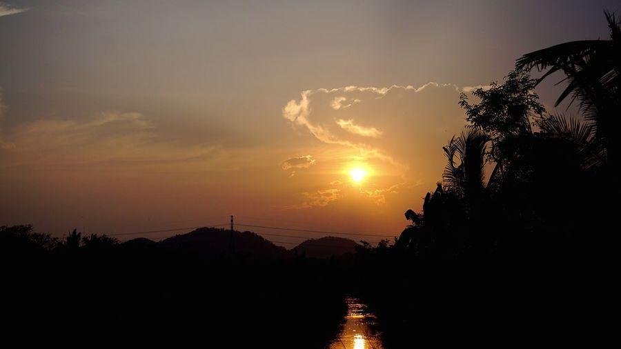 Sunset Sky Tree Scenics Beauty In Nature Tranquil Scene Tranquility Nature Sun Outdoors Vanilla Sky Mountain Mirror