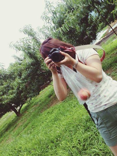 Camera Trip Peachpicking
